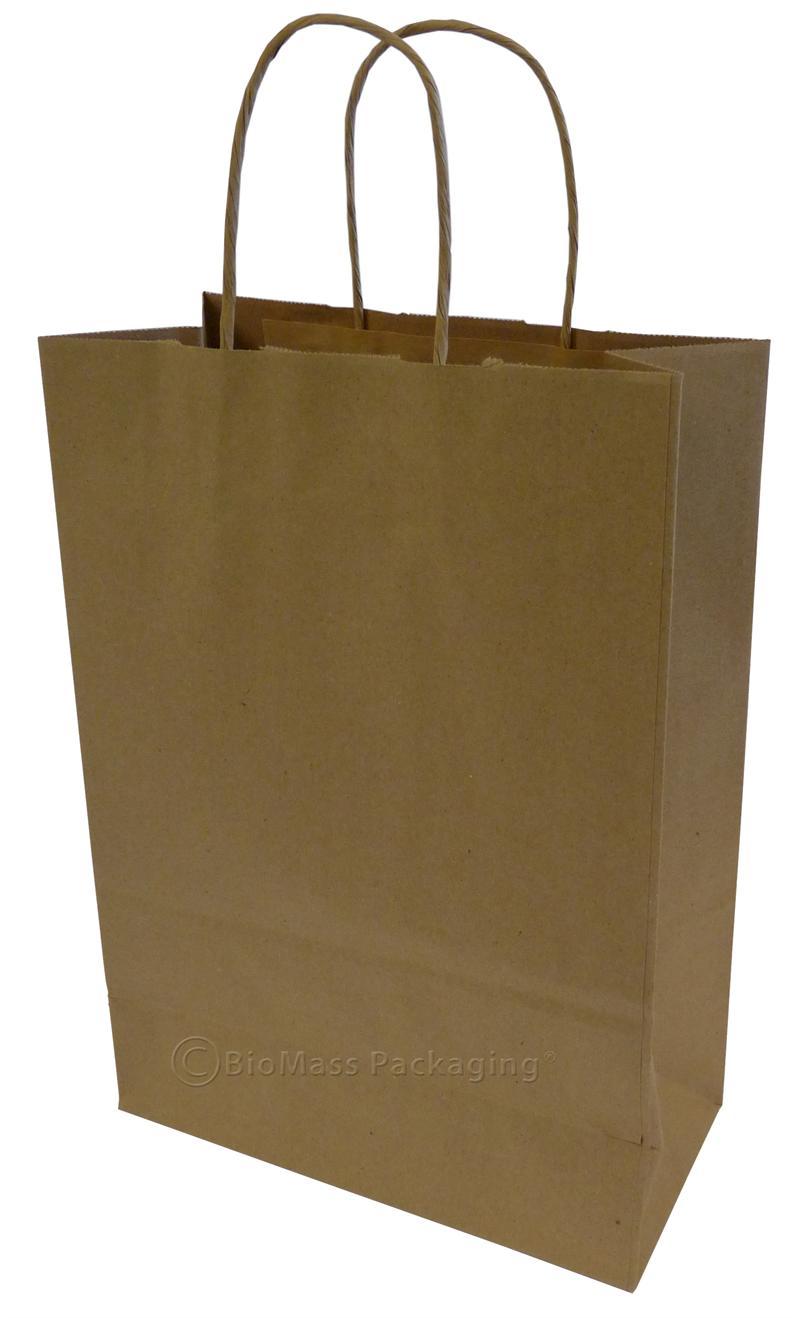 Natural Kraft Shopping Bag w/handles (10