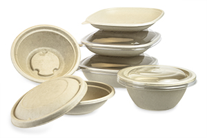 Pulp-Based Bagasse Deli Takeout Containers