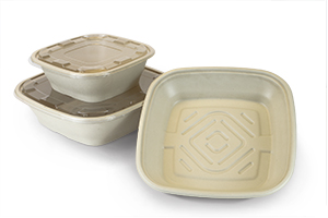 Catering Bowls & Lids