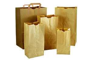 Compostable Recycled Paper Grocery Bags